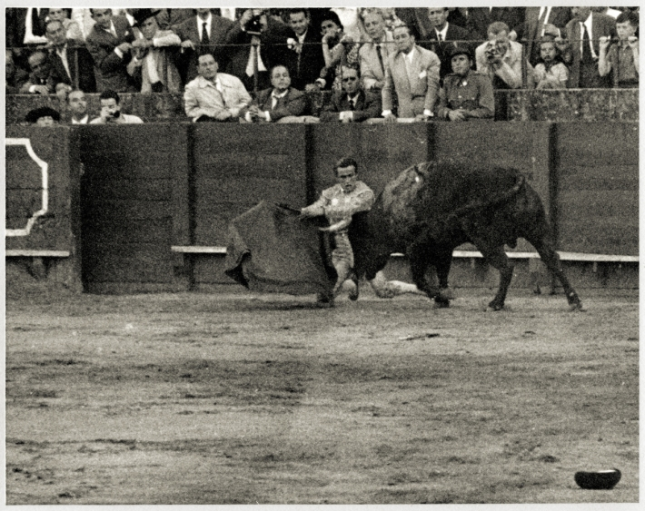 BullFight003Web