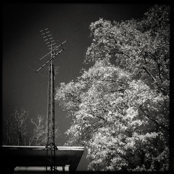 Jim's House Antenna